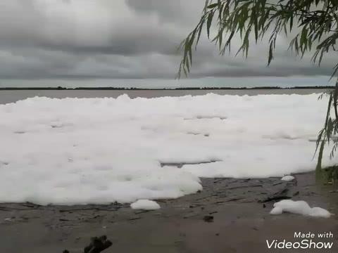 Preocupación en Alvear por espesa espuma blanca sobre el río