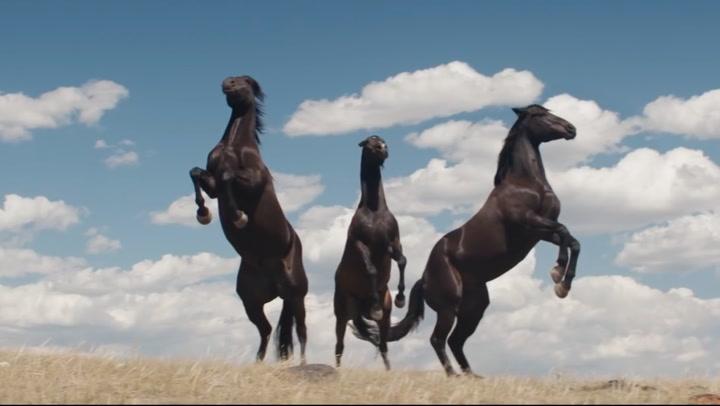 'My Heroes Were Cowboys' Trailer
