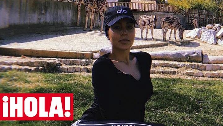 ¡Entre jirafas y cebras! El plan más salvaje e intrépido de Georgina y los peques de la casa