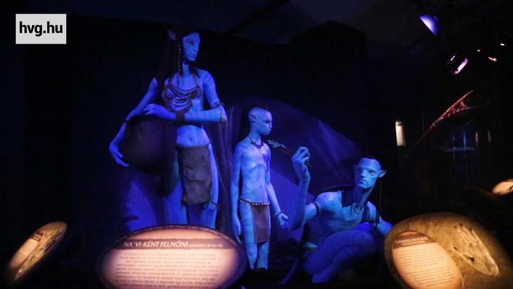 Az Avatar filmekből ismert holdon a Pandorán jártunk