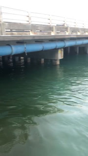 Miami Beach Storm Pump Discharging Dirty Water Into Biscayne Bay