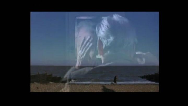 Venus - Trailer