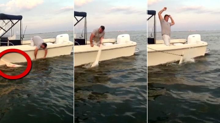 Gigantisk fisk angriper redningsmannen