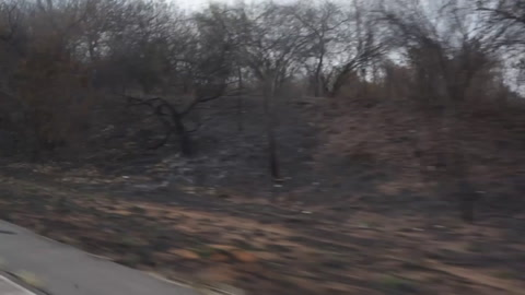 Bolivia urge a Paraguay y Brasil a frenar incendios en frontera trinacional