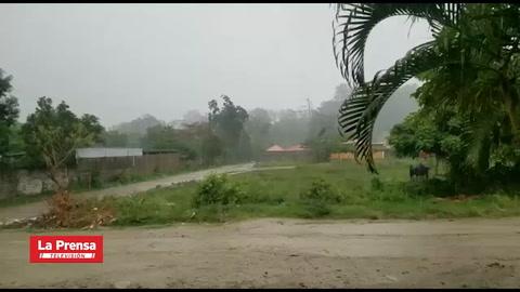 Fuerte lluvia causa inundaciones en varios sectores de San Pedro Sula
