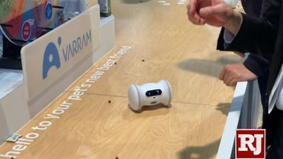 CES 2019: Varram lats you play with your pet remotely