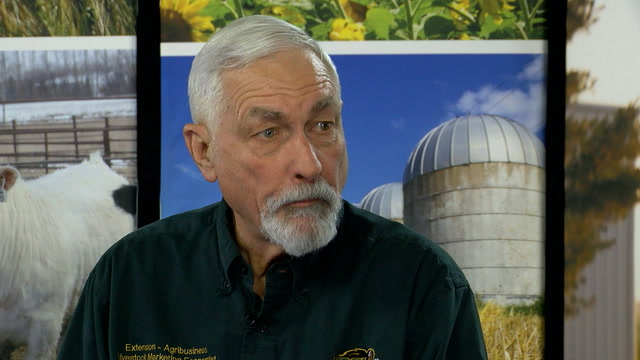 NDSU Extension Livestock Economist Time Petry talks the impact of Coronavirus on the livestock market.