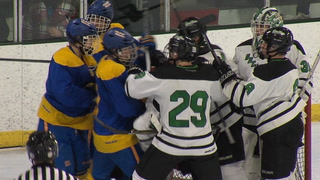HS HCKY: TRF comes back to beat EGF, Warroad skates into 8A title game