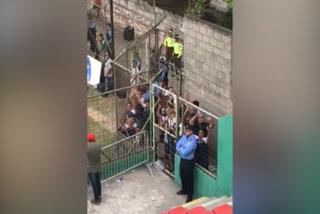 El provocador festejo de jugadores y cuerpo técnico del Motagua en el Yankel