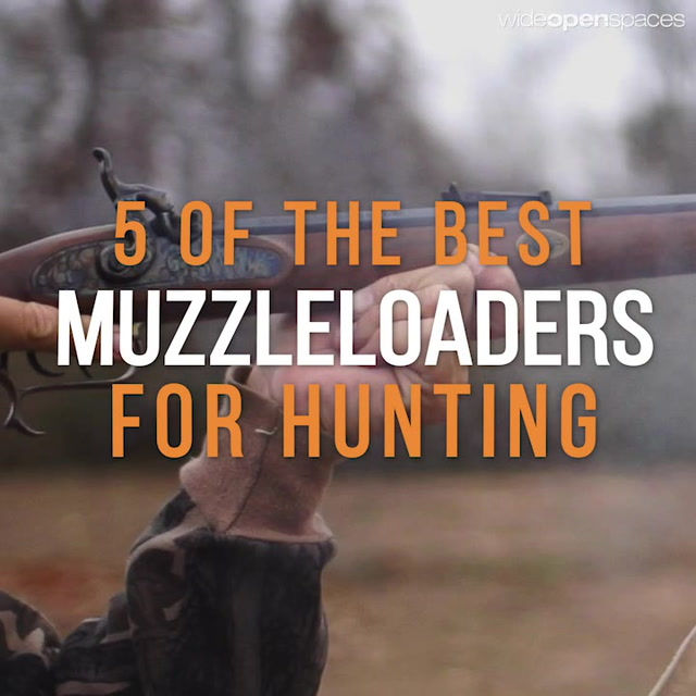 The 5 Best Muzzleloaders for Hunting