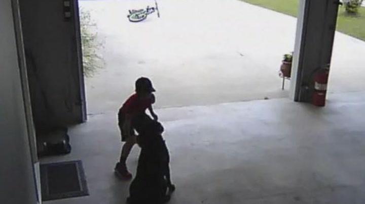 Gutten snek seg inn i garasje – kun for å gi hunden en klem