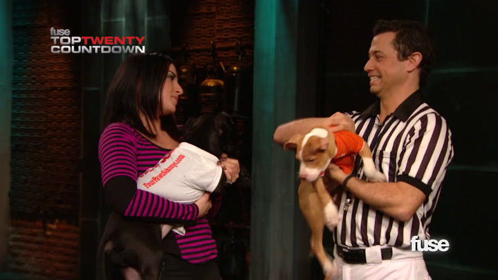 Shows:Top 20: The 'Puppy Bowl VIII' Puppies