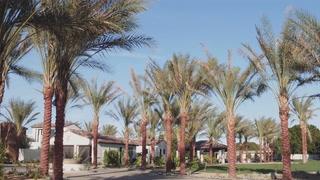 george jr + kamari | Rancho Mirage, California | beach dunes estate