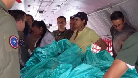El viaje para salvar a Júpiter, un león maltrecho en Colombia