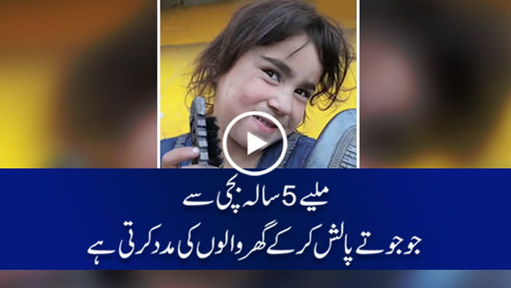 5 year old girl helping family by earning from shoe polish