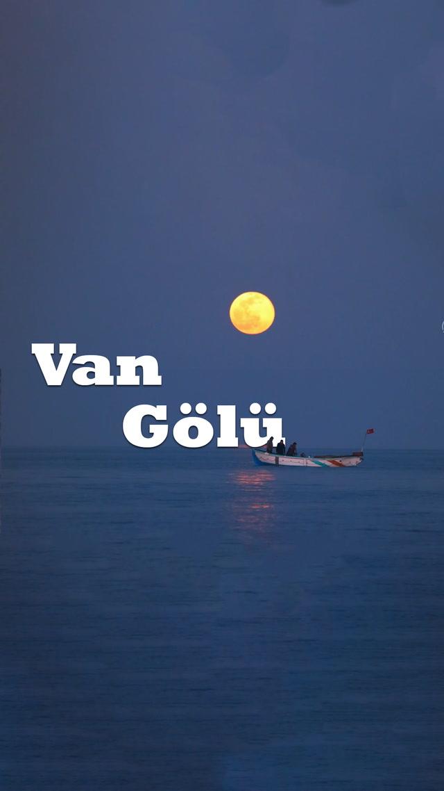 Van Denizi