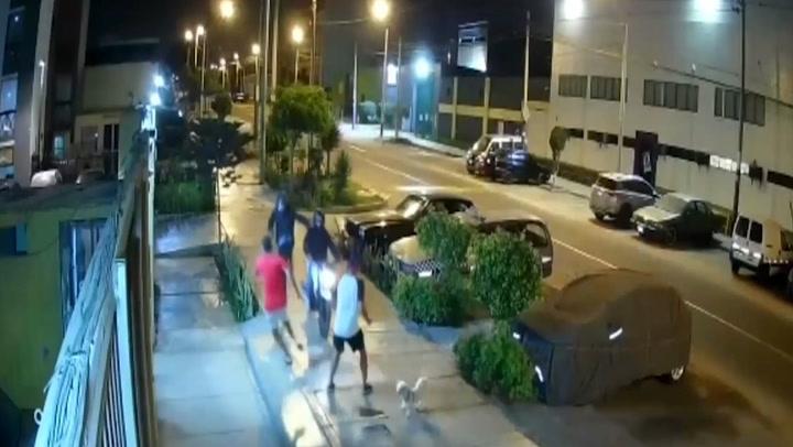 Padre e hijo sufren asalto mientras paseaban a sus mascotas en Chorrillos