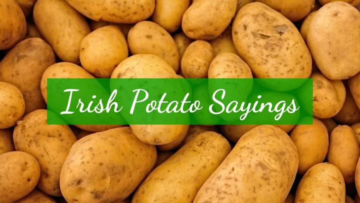 Irish Potato Sayings
