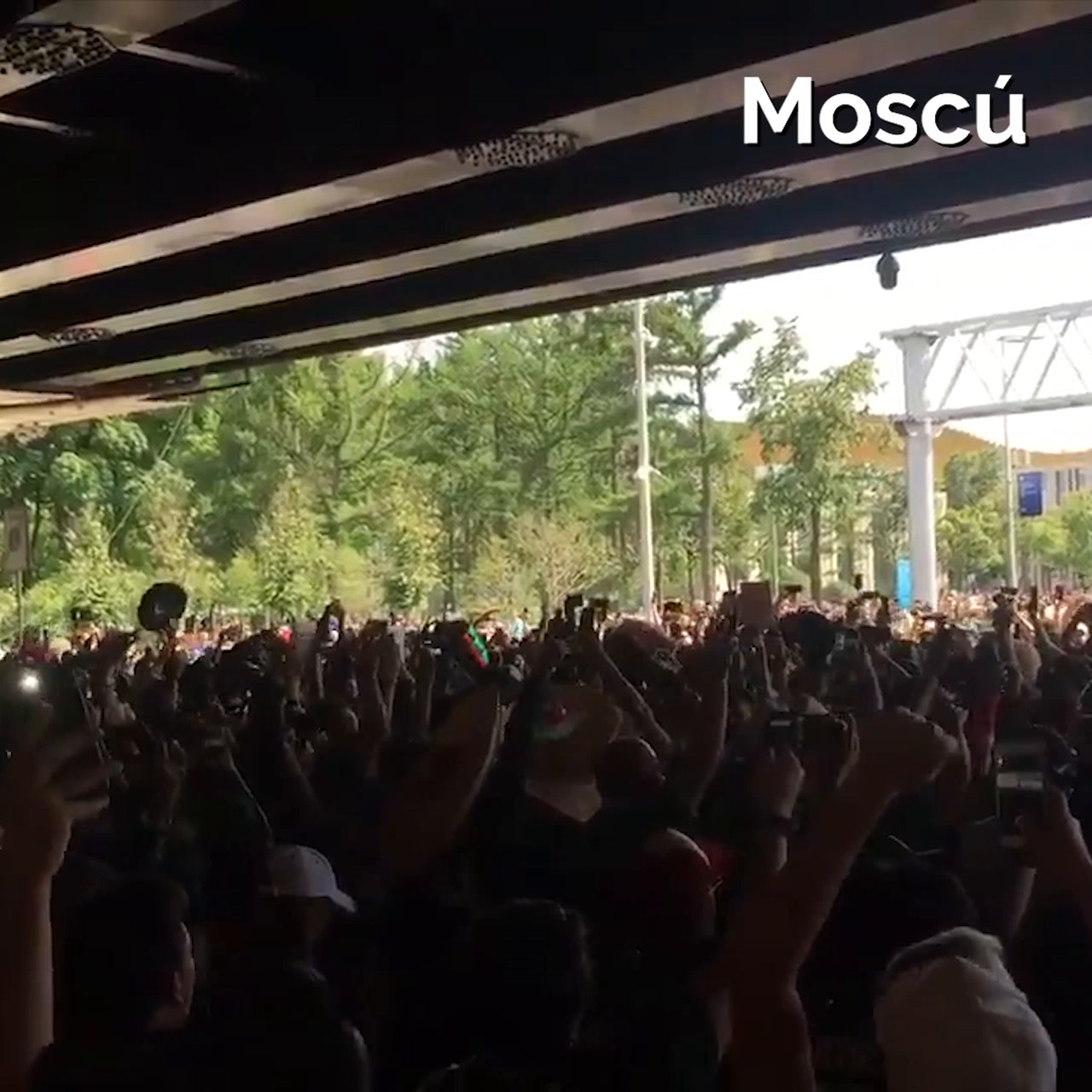 Video: Los festejos de México en todo el mundo