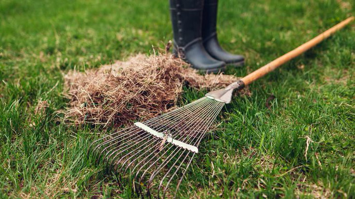5 DIY Landscaping Projects Anyone (Yes, You!) Can Do
