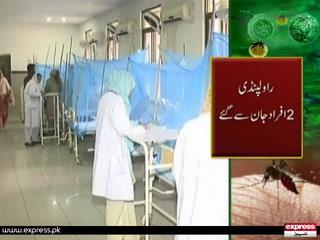 ڈینگی بے قابو۔۔۔ پنجاب حکومت بے بس