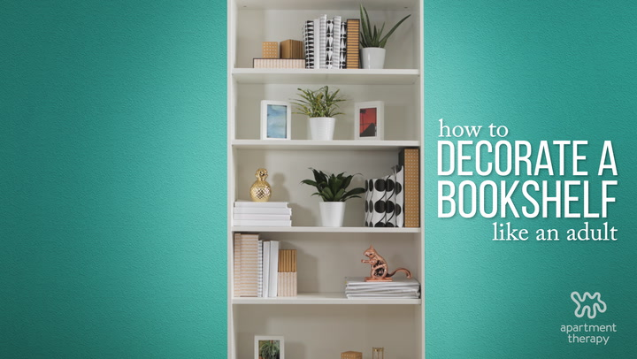 How To Decorate Bookshelves How To Decorate Your Bookcase Like A Pro  Apartment Therapy