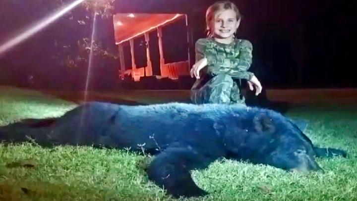 10-åring skjøt bjørn med armbrøst - tar nettet med storm