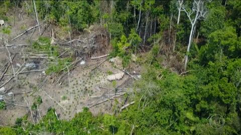 Filman una tribu en la Amazonia brasileña que permanece aislada de la civilización