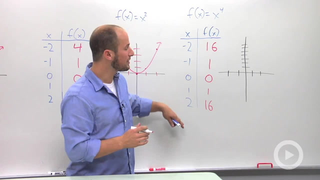 Basic Polynomial Graphs - Problem 3
