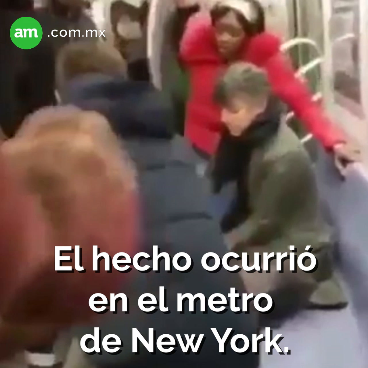 Perro ataca a mujer en metro