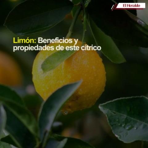 Limón: beneficios y propiedades de este cítrico