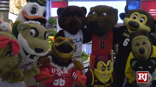 PAC 12 Mascots Invade MGM – VIDEO