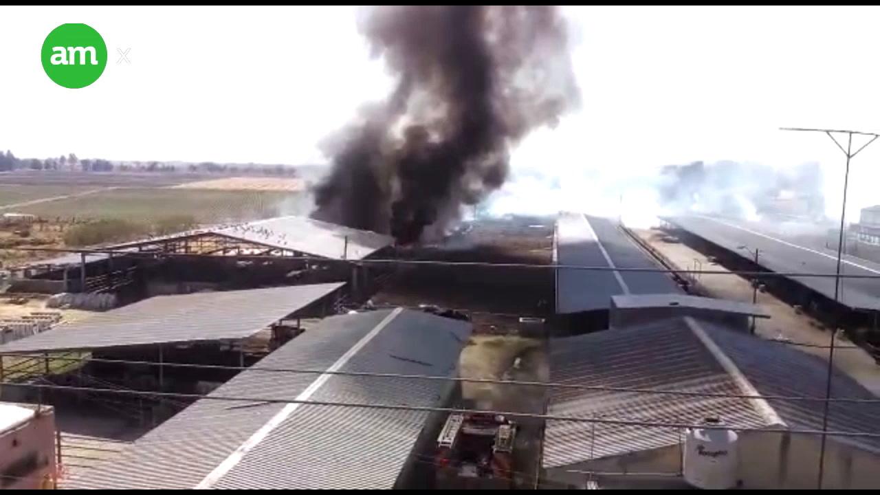 Arden establos frente a balneario