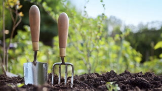 How to Clean Garden Tools--Your Plants Will Thank You!