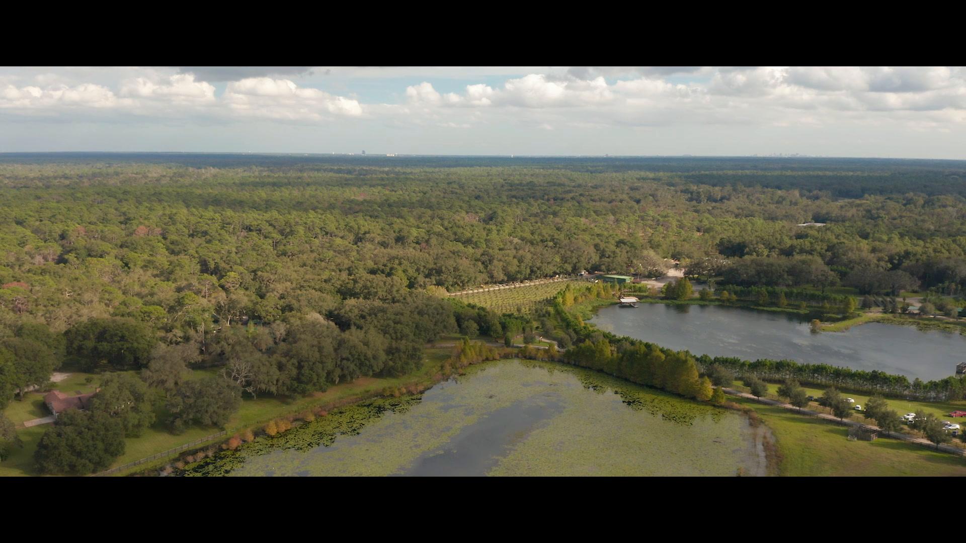 Candace + Mikell | Apopka, Florida | Club Lake Plantation