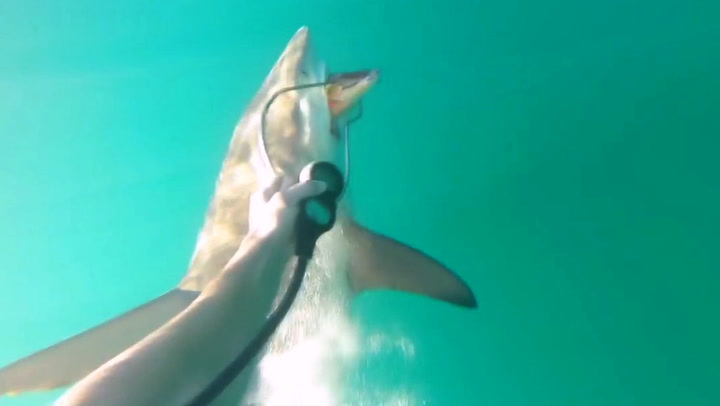 Fangsten biter på – så får fiskeren selskap