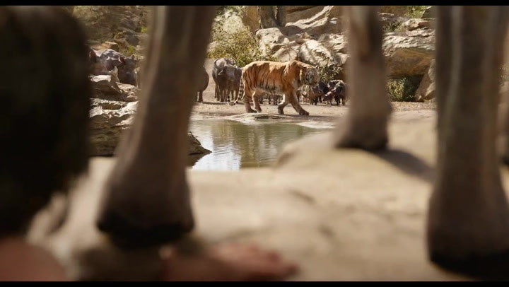 Disney's 'The Jungle Book' (2016) Intro to Shere Khan
