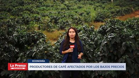 Productores de café afectados por los bajos precios