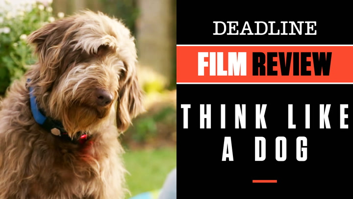Think Like A Dog | Film Review