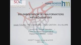 Thérapie cellulaire endovasculaire dans un modèle de malformation artério-veineuse : Concept de Bio-Embolisation
