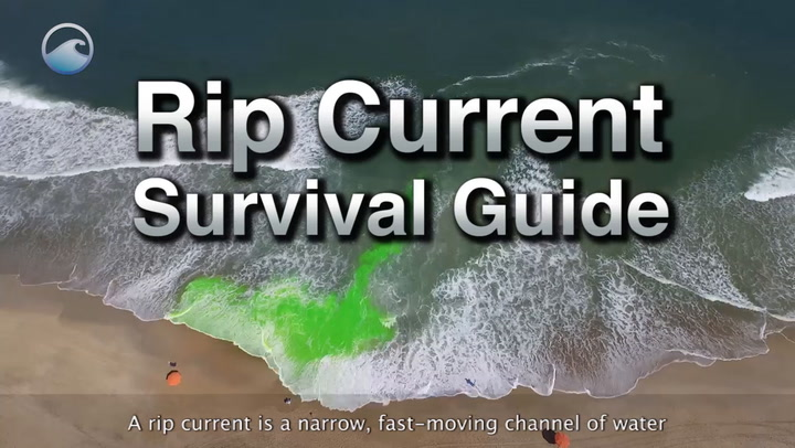 Rip currents kill hundreds of people worldwide each year. Here's what to do if you're caught in one.