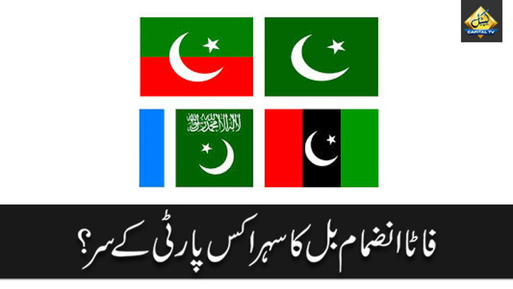 Which Party Will be crowned For FATA Merger ?