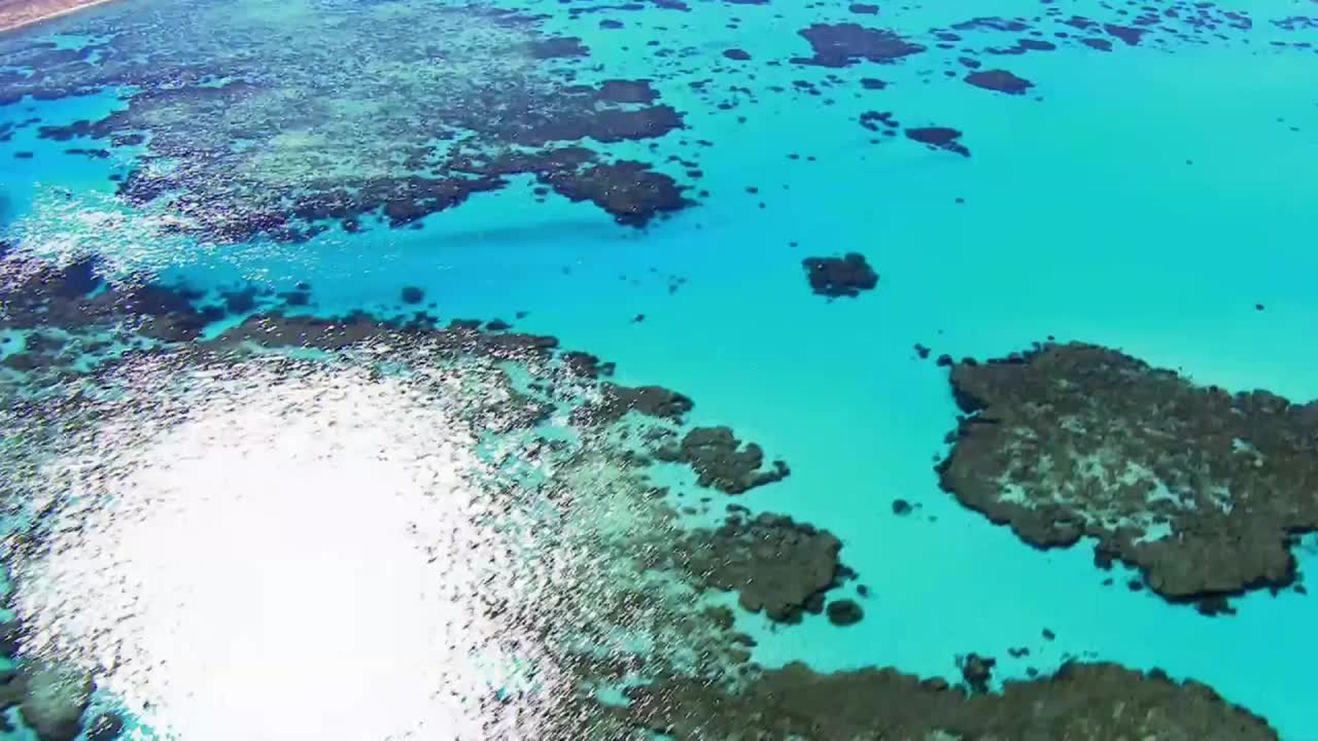 Indonésie sauvage : L'Australie, vue du ciel