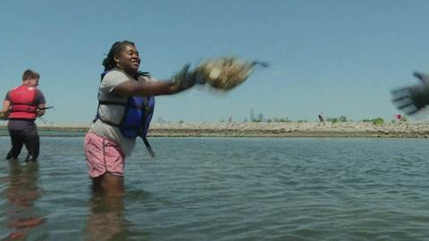 NY busca recuperar su título de capital mundial de las ostras