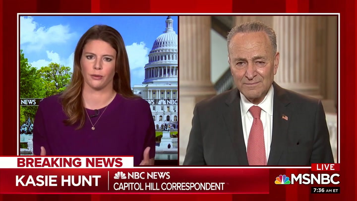 Schumer on Trump: 'You Never Can Underestimate How Bad This President Will Be in Every Instance'