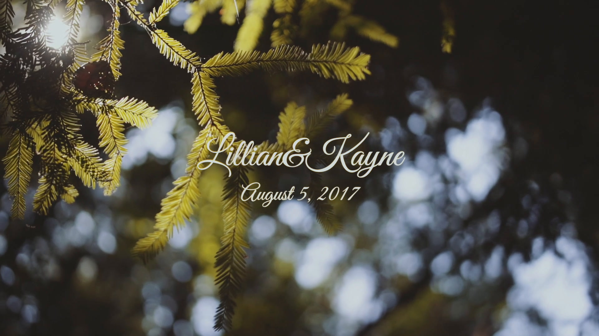 Lillian + Kayne | Ben Lomond, California | Sequoia Retreat Center