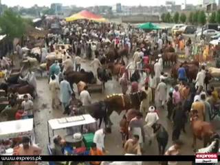 مویشی منڈیوں کے اوقات کار صبح 6 سے شام 7 بجے تک ہوں گے، اسد عمر