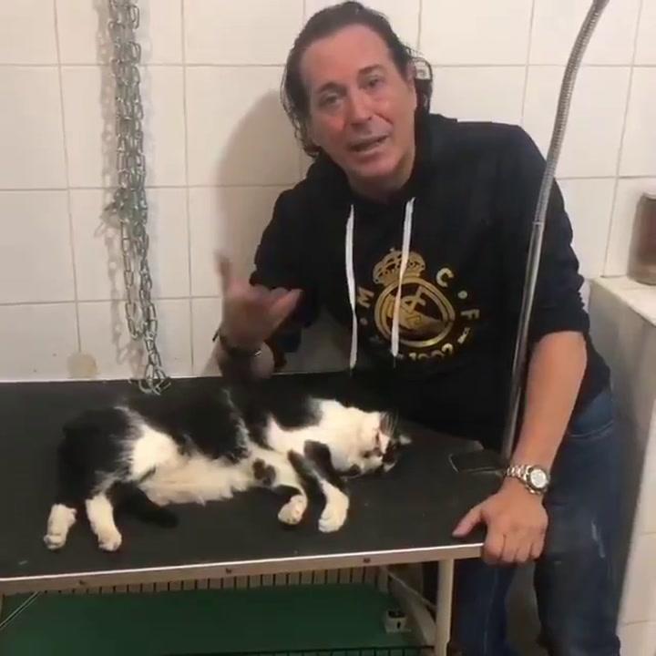 Desgarrador vídeo de Pipi Estrada junto al cadáver de su gato Trapito
