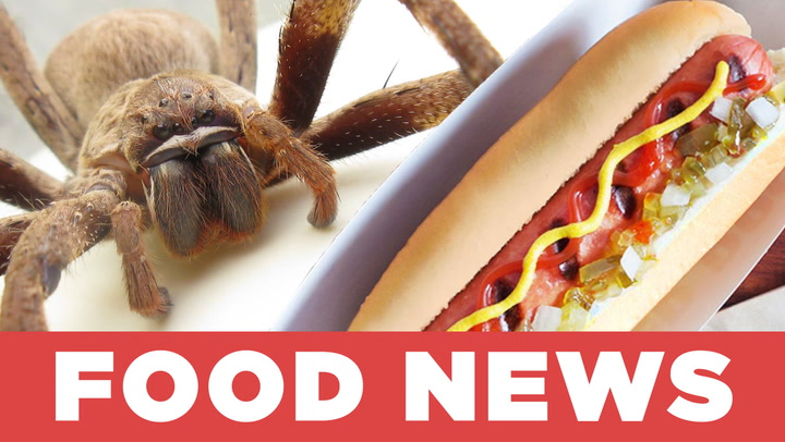 Giant Spiders And Burger King Hot Dogs The Katchup