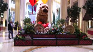 Venetian, Palazzo showcase Chinese New Year display